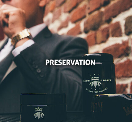 preservation-1